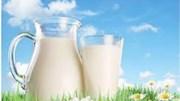 Thị trường sữa 2016: Giá sữa bột nguyên kem đã tăng 50% từ đáy