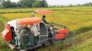 Thủ tướng chỉ đạo tổng điều tra nông thôn, nông nghiệp và thủy sản