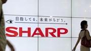 Sharp lỗ ròng 5 năm liên tiếp