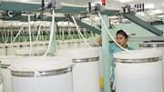 TPP được thông qua: Cổ phiếu ngành dệt may sẽ tạo 'sóng'?