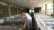 Thu hàng trăm triệu đồng nhờ bò cạp nướng, dế chiên giòn