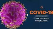 Cập nhật tin COVID-19 ngày 10/4 và công tác phòng, chống dịch của Bộ Công Thương