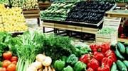 Xuất khẩu rau quả có nhiều cơ hội tăng trưởng tích cực trong bối cảnh dịch COVID-19