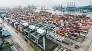 Kim ngạch nhập khẩu từ thị trường Áo tháng 8 tăng 44%
