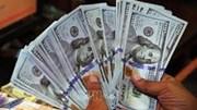 Nguyên nhân khiến tỷ giá USD bật tăng trong tuần qua