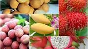 Xuất khẩu quả và quả hạch đạt 2,2 tỷ USD năm 2020