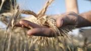 Tháng 2/2021- một trong những tháng 2 khô hạn nhất tại các khu vực trồng trọt chính của Argentina