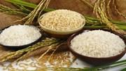 Thị trường lúa gạo ngày 12/4: Giá lúa giảm