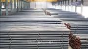 Xuất khẩu thép cuối năm dự báo tăng trưởng tốt