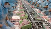 Kiểm tra chặt thủy sản nhập khẩu từ Đài Loan