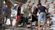 Nhan nhản nhà máy cán tôn giá rẻ