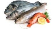 Tổng sản lượng thủy sản 5 tháng đầu năm tăng 1,6%