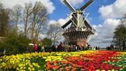 Kim ngạch xuất khẩu sang Hà Lan quý I/2017 tăng 14,5%