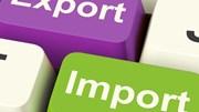 Kim ngạch xuất nhập khẩu đạt gần 290 tỷ USD