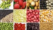 Giá rau củ nhập khẩu tuần 2 -8/2/2018