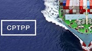 Thủy sản đứng trước cơ hội thúc đẩy xuất khẩu khi CPTPP được ký kết