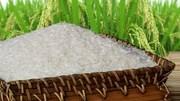 Doanh nghiệp Ấn Độ và Jordan cần nhập khẩu gạo và nấm