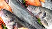Xuất khẩu thủy sản sang các thị trường 3 quý đầu năm 2019
