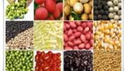 Gỡ nút thắt logistics cho xuất khẩu nông sản