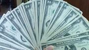 Tỷ giá ngoại tệ ngày 1/6/2020: USD đồng loạt giảm