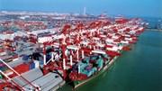 Xuất khẩu hàng hóa: Doanh nghiệp trong nước là điểm sáng