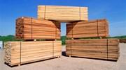 Thị trường chủ yếu cung cấp gỗ, sản phẩm gỗ cho VN 6 tháng đầu năm 2020