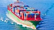 Xuất khẩu vào châu Âu tăng mạnh sau EVFTA