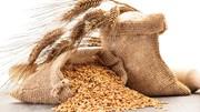 Trên 70% lượng lúa mì nhập khẩu về Việt Nam có xuất xứ từ Australia
