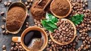 Xuất khẩu cà phê 6 tháng đầu năm 2021 đạt gần 1,55 tỷ USD