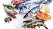 Hai nguyên nhân khiến xuất khẩu thủy sản sang EU nửa cuối năm sẽ chậm lại