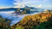 Nhập khẩu hàng hóa từ Indonesia 8 tháng năm 2021 tăng gần 52% kim ngạch