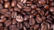 Giá cà phê kỳ hạn tại NYBOT sáng ngày 29/7/2016