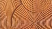 Giá gỗ xẻ tại CME sáng ngày 5/12/2016