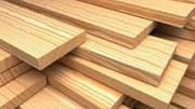 Giá gỗ xẻ tại CME sáng ngày 17/10/2017