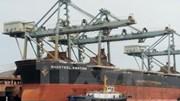 Xuất nhập khẩu của Nhật Bản liên tục gia tăng