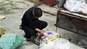 Bắt hơn 3 tấn thịt đông lạnh tạm nhập tái xuất quay lại Việt Nam