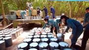 Tiêu thụ cao su tự nhiên toàn cầu dự báo tăng hơn 40% trong 3 năm tới