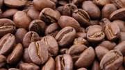 Giá cà phê trong nước giảm 200 nghìn đồng/tấn