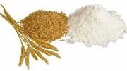 Thị trường NL TĂCN thế giới ngày 19/10: Giá lúa mì tăng cao