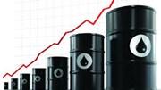 TT dầu TG ngày 12/12/2018: Giá dầu tăng hơn 1%