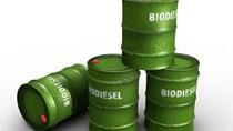 Xuất khẩu dầu diesel sinh học của Indonesia trong năm 2018 khoảng 1 triệu tấn