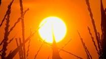Thế giới vừa trải qua tháng nóng nhất trong 137 năm qua