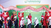 Tạo thế mạnh cho đậu nành Việt hội nhập TPP