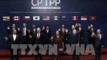 Bộ trưởng Trần Tuấn Anh: CPTPP giúp VN có điều kiện tiếp tục cất cánh ở mức độ mới