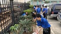 Thanh niên Bộ Công Thương hưởng ứng phong trào trồng cây làm đẹp môi trường công sở