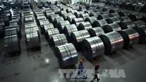Các nền kinh tế châu Á hợp tác ứng phó với cuộc chiến thuế quan của Mỹ