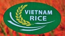 Dấu ấn 'Vietnam Rice'. Bài 2: Bứt phá từ thương hiệu quốc gia