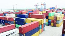 Hiệp định EVFTA có thể được EU phê chuẩn nửa đầu năm 2020
