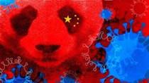 Virus corona ảnh hưởng tới thương mại của Trung Quốc và toàn cầu