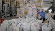 Long An kiến nghị xuất khẩu lại gạo nếp không giới hạn sản lượng